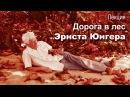 Лекция Дорога в лес Эрнста Юнгера