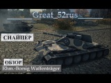 Снайпер | Обзор Rhm-Borsig Waffenträger