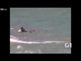 Ужас и кошмар . Реальное Нападение акулы в Бразилии