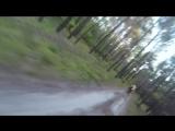Как чувак убегал от медведя