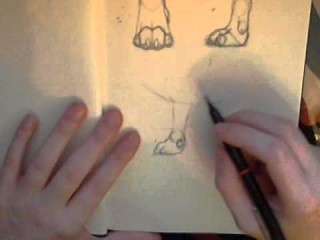 how to draw wolf/dog paws