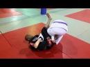 Aldir Junior Spider guard to knee bar