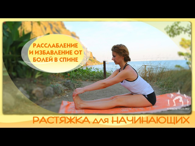 Растяжка для начинающих Расслабление развитие гибкости и избавление от болей в спине
