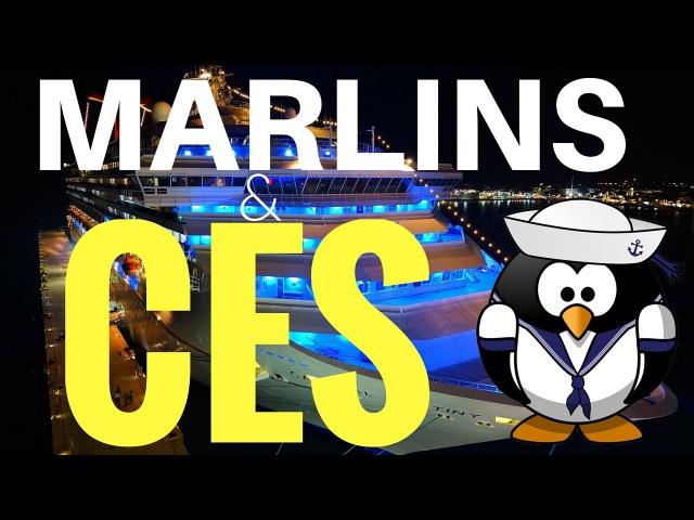 Marlins Test CES Test. Топ 7 Ошибок при сдаче Марлинс и ЦЕС тестов!