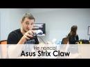 Обзор игровой мыши ASUS STRIX CLAW для цепких рук
