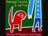 Teenage Fanclub &amp Jad Fair - Crush on You