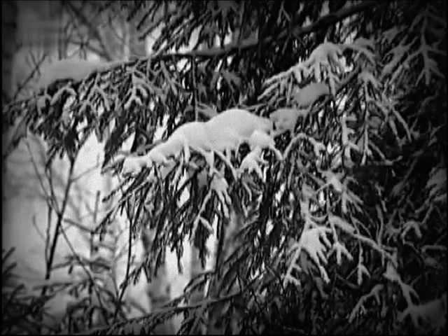 Ретро 60 е - Муслим Магомаев - Падает снег (клип)