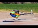 Alan Szabo Jr ALIGN Trex 800E DFC 850MX Dominator 2 5 2014