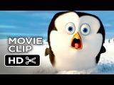 Пингвины Мадагаскара (первые 4 минуты мультфильма) 6+