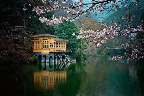 Озеро Камакитако в городе Сайтама,