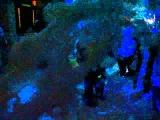 ПЕННАЯ ДИСКОТЕКА - ПЕННАЯ ВЕЧЕРИНКА. 14 августа 2015 . Диско-Бар Радуга г.Кобрин. Часть Вторая