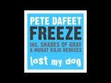 Pete Dafeet - Freeze