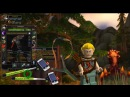 Хороший хант зря стрел не мечет PvP Гайд по Охотнику Стрельба World Of Warcraft Zonom