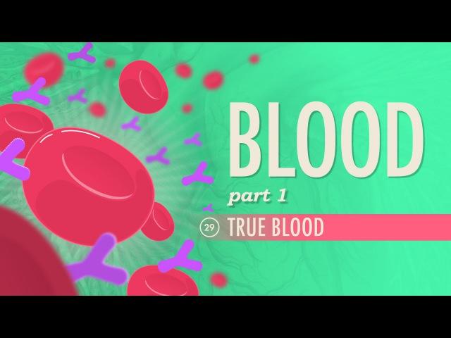 Blood, Part 1 - True Blood: Crash Course AP 29
