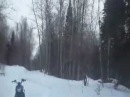 снегоход IRBIS DINGO T125 VS T150