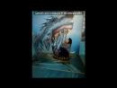 «Со стены друга» под музыку В.А.Моцарт  - Музыка ангелов  (Симфония №6) - Поп-ремикс. вокальное добавление (Yiruma & Yuvin- Rive