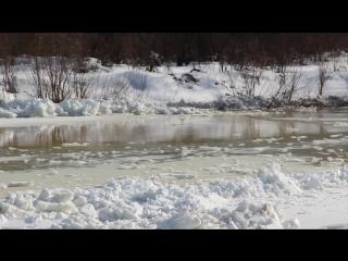 Ледоход на реке Лебедь.10-14 апреля 2015. Горный Алтай