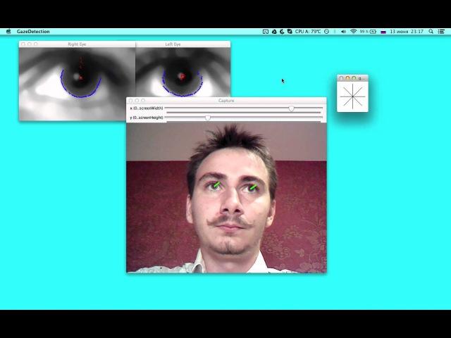 Gaze Point Estimation (Eye tracking) using single low-cost web-cam