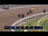RACE REPLAY: 2016 Fountain of Youth Stakes Featuring Mohaymen