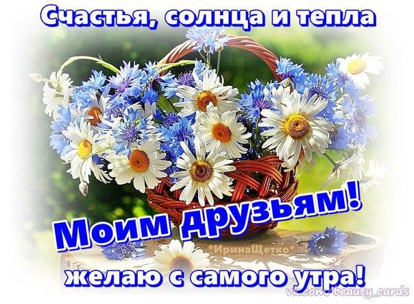 https://pp.vk.me/c625321/v625321081/4452c/tQnB0AVUORs.jpg