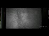 Белый шум (Джеффри Сакс,2004)