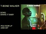 T-BONE WALKER - GOOD FEELIN' - FULL ALBUM 1969