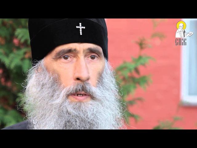Ми не поступимося нашими святинями. Інтерв'ю Владики Сергія, митрополита Тернопільського