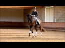 Carl Hester Dances With Wolves