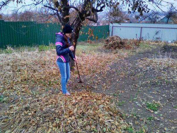квітучий куточок на території дитячого садка в селі