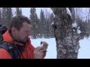 Шутка про добывание пропитания зимой на северном Урале