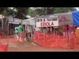 Российская вакцина против Эболы будет официально представлена на исполкоме ВОЗ - Первый канал