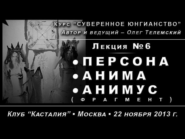 Суверенное Юнгианство, лекция №6. Персона, Анима, Анимус /демо/ (2013.11.22)