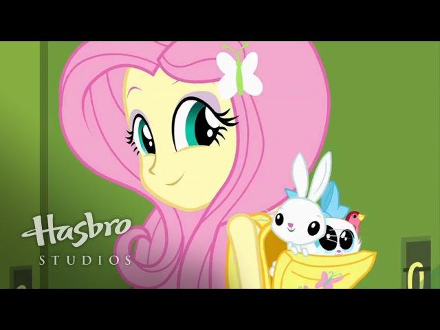 Мой маленький пони: Equestria девушки - Знакомства Флаттершай