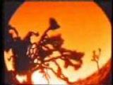 Aegosopolis- Aphex Twin
