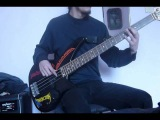 Brothers Of Metal - Manowar - Bass Cover