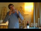 Винная карта мира-7. Лучшие вина мира. Шато Шеваль Блан и Шато Озон.