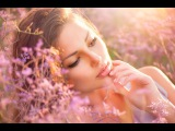 The Best Chill out music Session Balearic Cafe Chillout Island Lounge Playlist