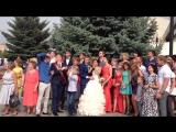Свадебные голуби от Автопрокат