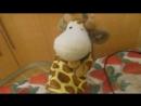 Мастер Шеф и жирафик