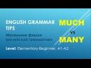 Грамматика английского языка much vs many vs lot of