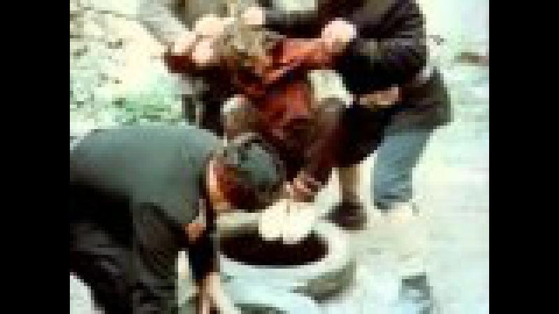 Чудаки (Грузинский фильм на русском) » Freewka.com - Смотреть онлайн в хорощем качестве