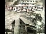 Ozark Mountain Daredevils ~ If You Wanna Get To Heaven