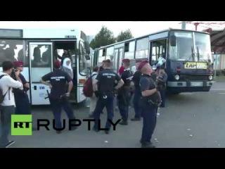 Венгрия: Сотни беженцев прибывают из Хорватии.