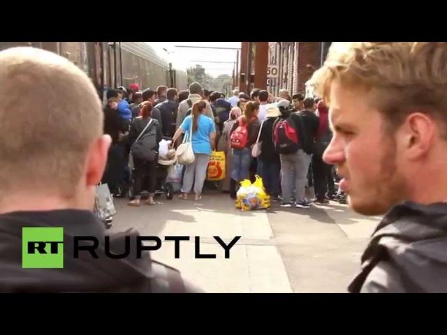 Дания: Многожильный беженцев на борту поезда в Копенгагене.