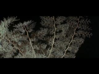 """Документальный фильм """"Атлантис / Атлантида - Создания моря / Atlantis - Le creature del mare."""" (1991)(Франция,Италия)"""