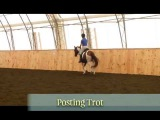 Posting and Sitting Trot - 40 Fundamentals of English Riding