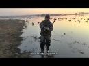 Охота на утку и гуся весной 2013