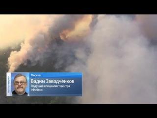 Эксперт Центра ФОБОС: дым от пожаров в районе ЧАЭС движется в сторону России и Белоруссии