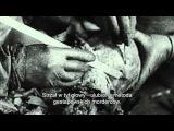 Кадры советской кинохроники об эксгумации тел погибших в Катыни.