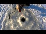 Рыбалка на Ротана - открытие зимнего сезона река Дуван